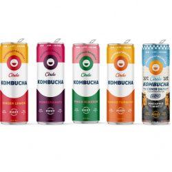 Buy Circle Kombucha Variety Pack Online